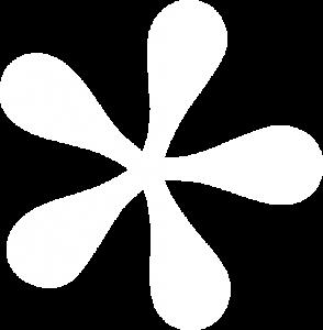 white asterisk image